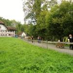 Ballenberg Almabtrieb (C) Conti-Reisen
