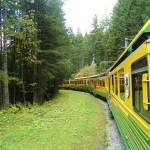 Wengenbahn (C) Conti-Reisen