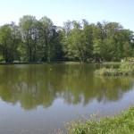 Arboretum in Kornik (C) Conti-Reisen